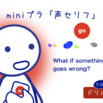 <b>(14) What if something goes wrong?</b>