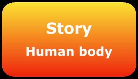 0091-story-human-body