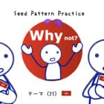<b>なりきりコース Seed Pattern Practice (25) Why not?</b>